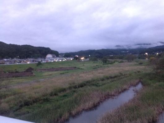 秋ウコン|春ウコン|沖縄長生薬草産業祭り